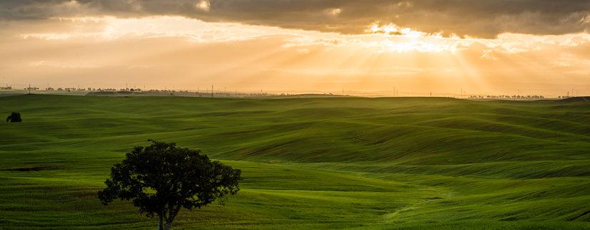 Landscape at Bitronot Ruhama Reserve