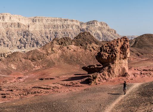 פסטיבל הצילום פלאנט ערבה - 5 סיבות מדוע זה כדאי