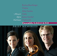 CD cover, Gilad Hochman, BRIEF MEMORIES, Ensemble Gaglian