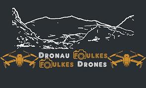 Dronau Foulkes Logo.png