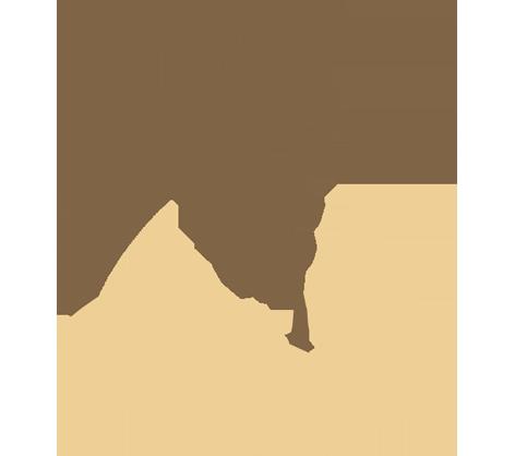 logotipo de OASIS PLANTAS SL
