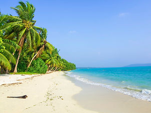 Havelock Island.jpg