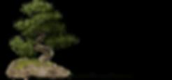 Tree [19%]-min.png