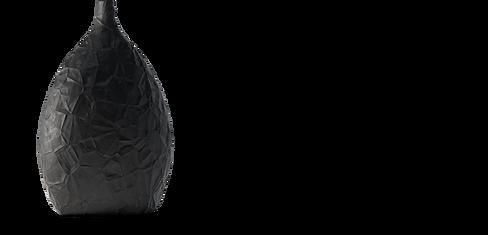 Black Vase-1.png