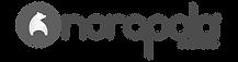 norapola_logo-the-agency-GS-b.png