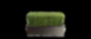 BoxWood_Base.png