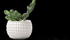 PlantPot_Classy.png