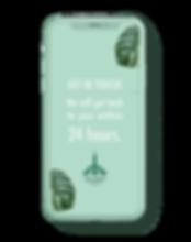 iPhone x green