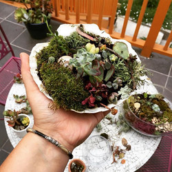 Some #miniature #terrarium #gardening to wind down from today's #clientcentered work and #shift befo