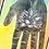 Thumbnail: Lotus Prayer 8x10