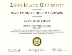 LIU Post BSc diploma
