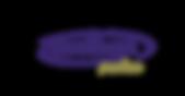 TaruTours Premium logo.png