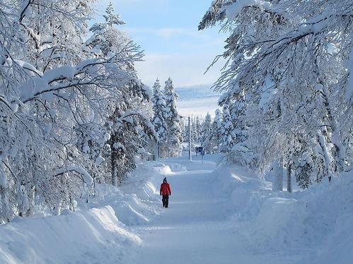 Talvi Pekka Kurkinen.jpg