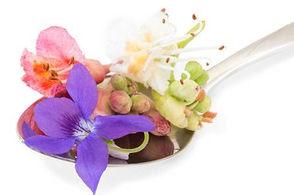Bach flowers.jpg