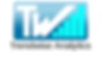Trendwise Analytics_logo.png