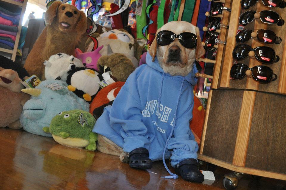 Store Mascot, Missy