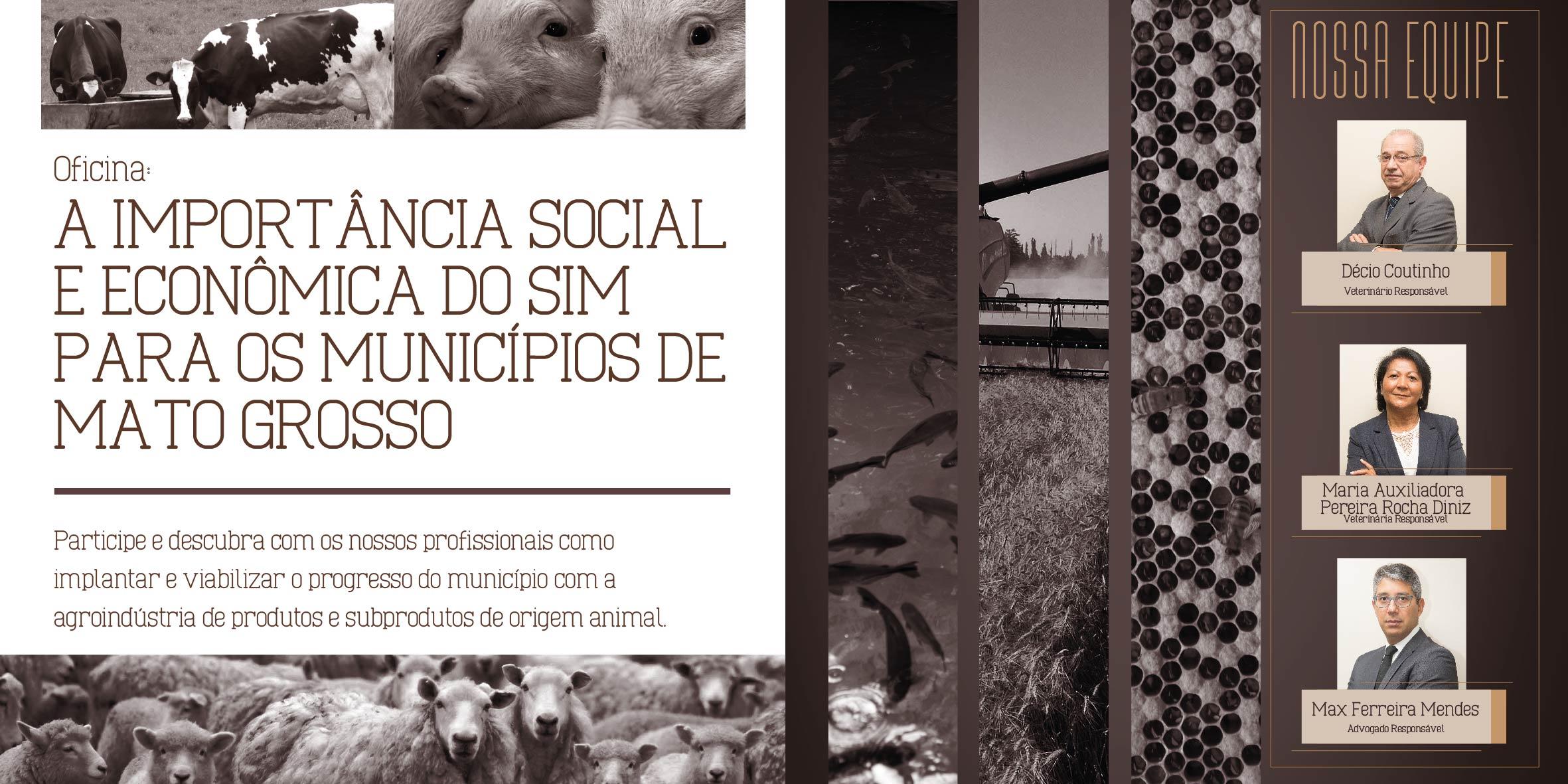 Ferreira Mendes Folder-02