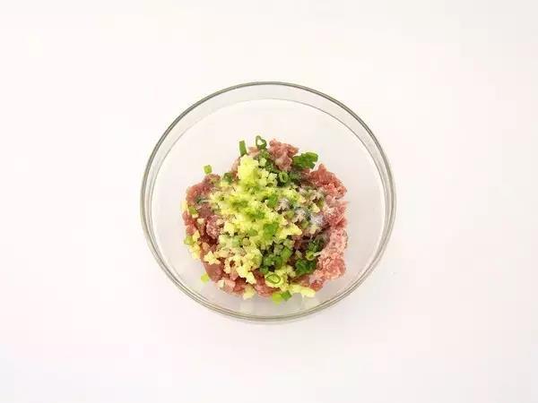 步骤5:将肉末、葱末、姜末和盐倒入碗中,拌匀。