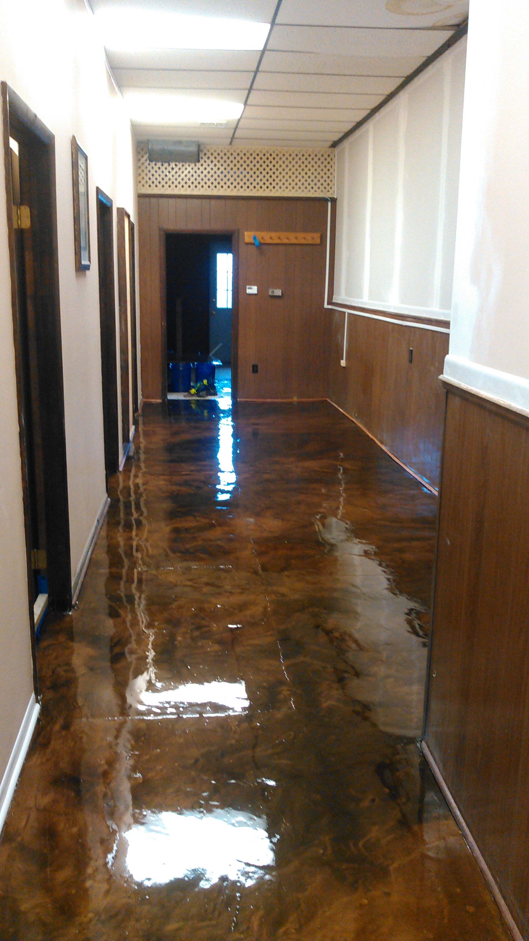 Designer Epoxy Floor