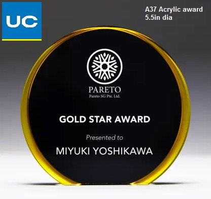 A37 Acrylic award with laser engraving