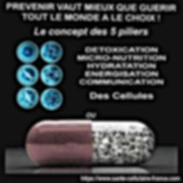 5 piliers medoc.jpg