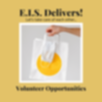 EIS Volunteer Opportunities2.png
