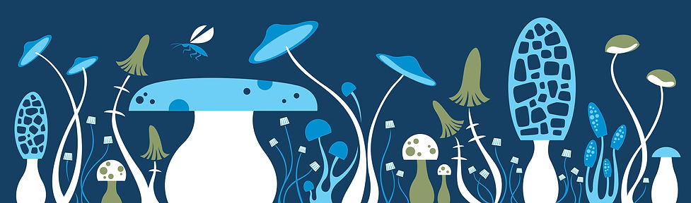 mushroom-fun-blue-graphic-pattern-illustration.jpg