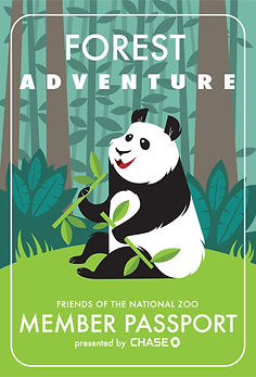 panda-zoo-animal-forest-character-kidsart-illustration-educational-activity.jpg