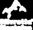 SIMO Logo weiß.png