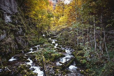 klein_200_Nationalpark_Gesäuse_2019©StefanLeitner.jpg