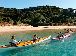 BAY OF ISLANDS KAYAKING.jpg