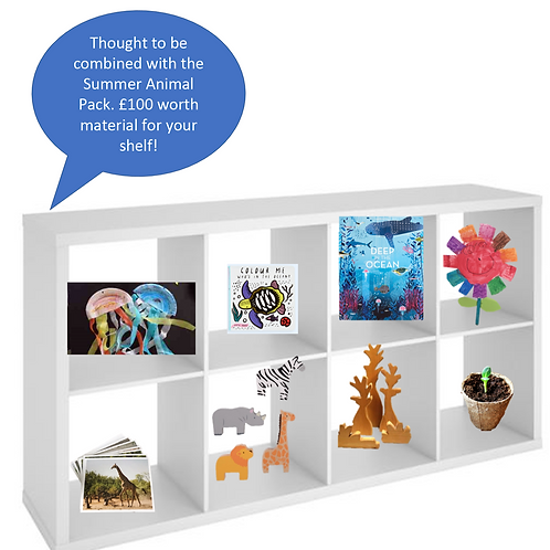 Animal Montessori Shelf