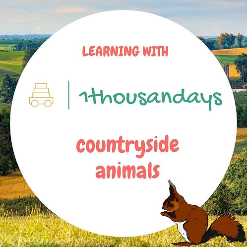 Countryside animals (suited for ages 4-5)