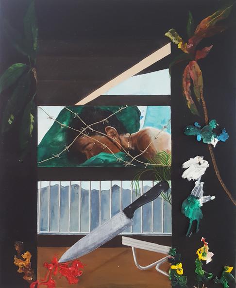 Vincentian artist Josette Norris thrills in debut local exhibition