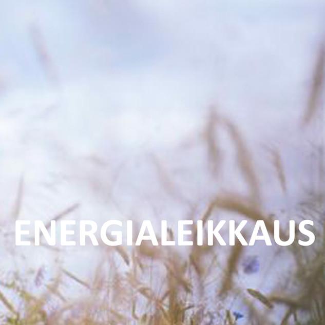 ENERGIALEIKKAUS.jpg