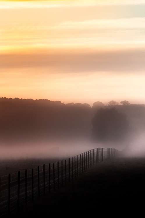 Fence, Fog and Frost - Millthorpe, NSW