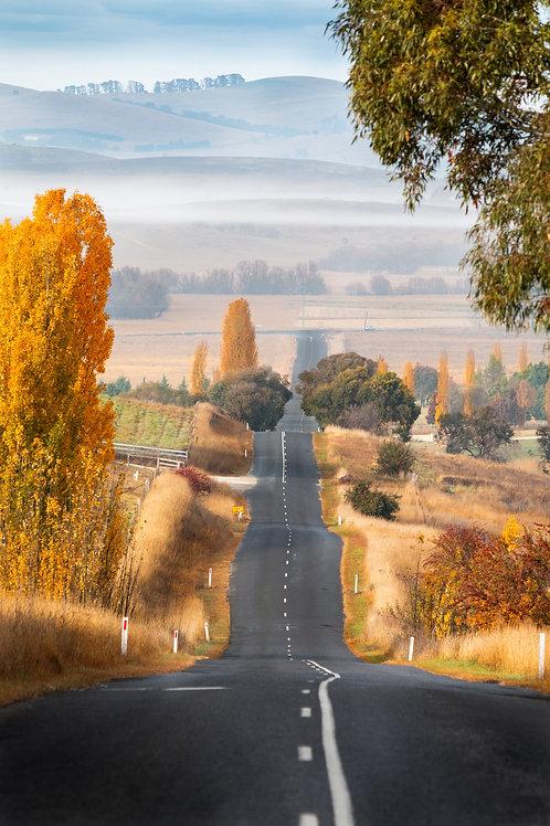 Autumn Road Trip Portrait - Blayney, NSW