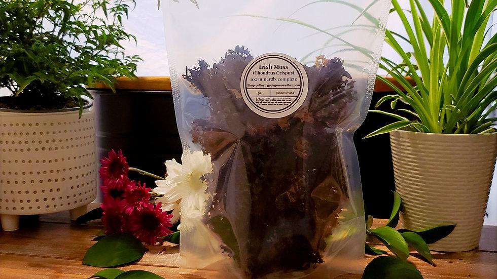 Wild Crafted Purple Sea Moss (Chondrus Crispus) 5 oz.