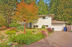 Cosmetic Fixer Lynnwood:  SOLD!