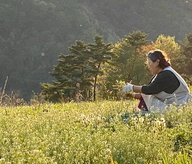 Mrs Park in her own farm
