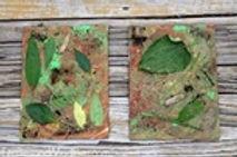 leaf art playgarden.jpg