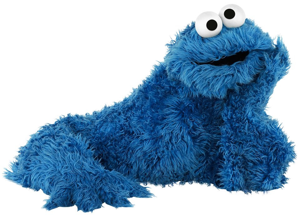 A picture of the cookie monster