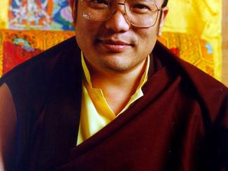O Lama Raiz - Tsawe Lama