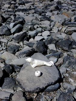 Algae Summit ceramic seal