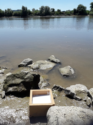 Site riverbed casts