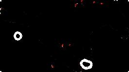 mccool-logo-1.png