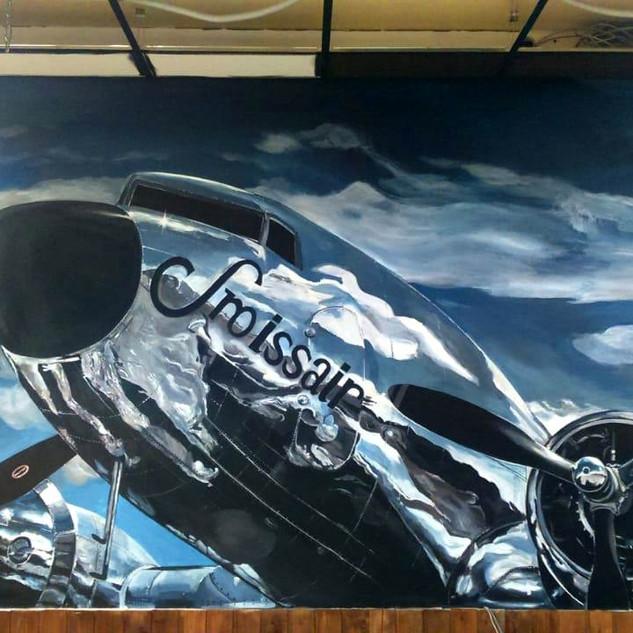 Роспись стен. Настенная живопись. Самолет. 3Д
