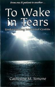 To Wake In Tears pixels-2.jpg