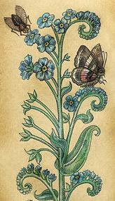 Средневековые открытки