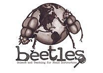 Beetles logo.jpg